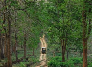 Kabini - places to visit