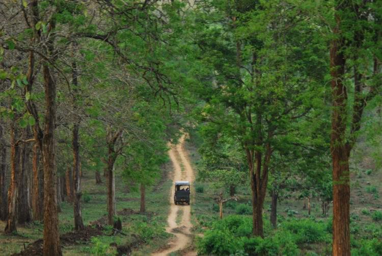 Kabini - places to visit