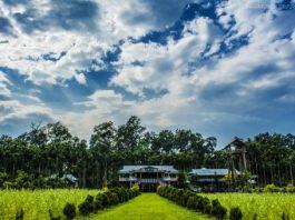 Places to visit in Rajabhatkawa