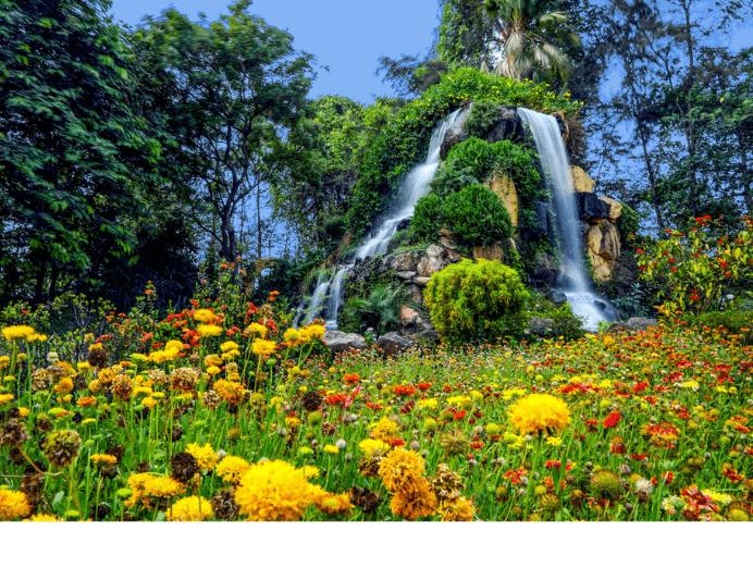 Hirwa Van Gardens