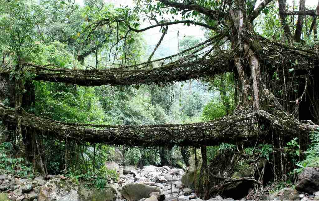 Places to visit in Cherrapunjee