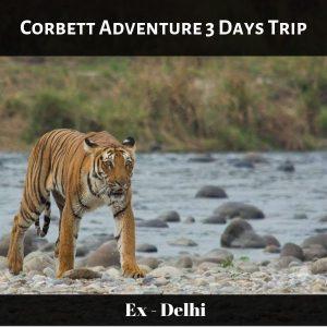 Corbett Adventure