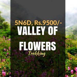 Trek_Valley of Flowers_Weekendthrill