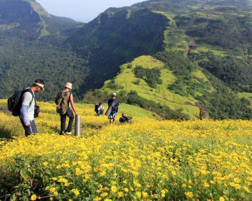 lonavala to bhimashankar range trek