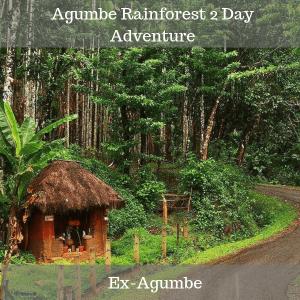 agumbe rainforest 2 day adventure trip