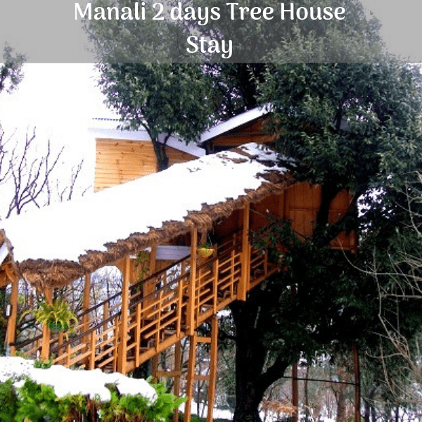manali 2 day tree house stay