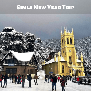 Simla New Year Trip