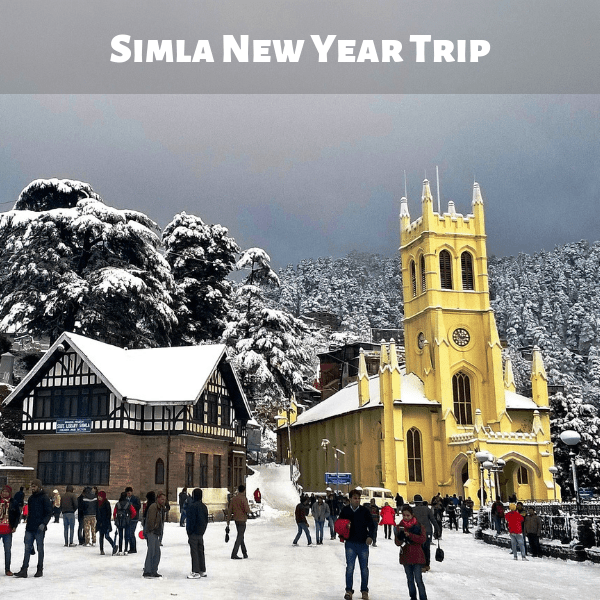 Simla New Year Trip