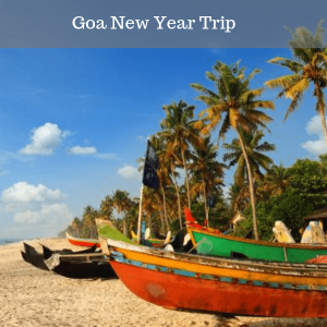 Goa New Year Trip