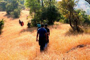 trekking at tapola