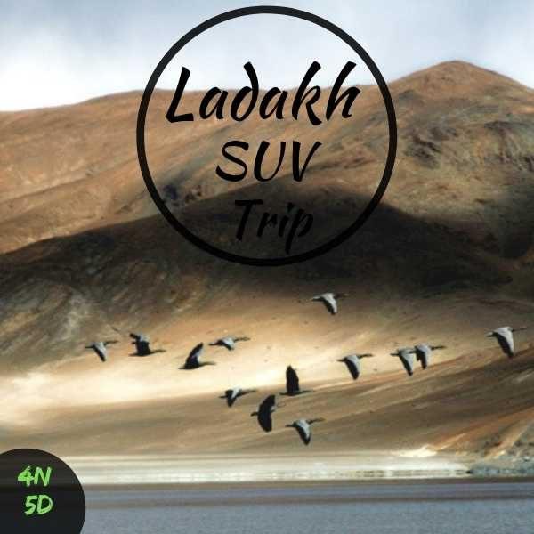 Ladakh suv trip