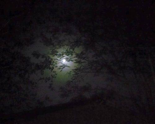 Night Trek to Irshalgad