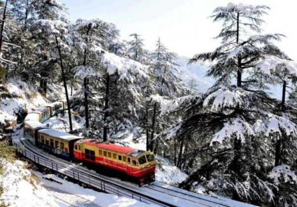 Bus Tour in Shimla