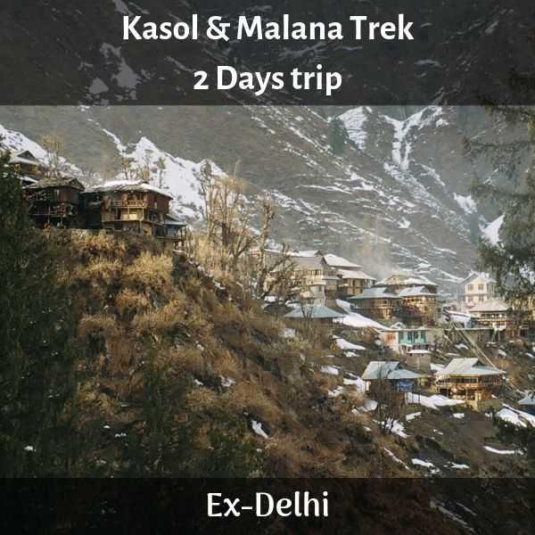 malana from delhi