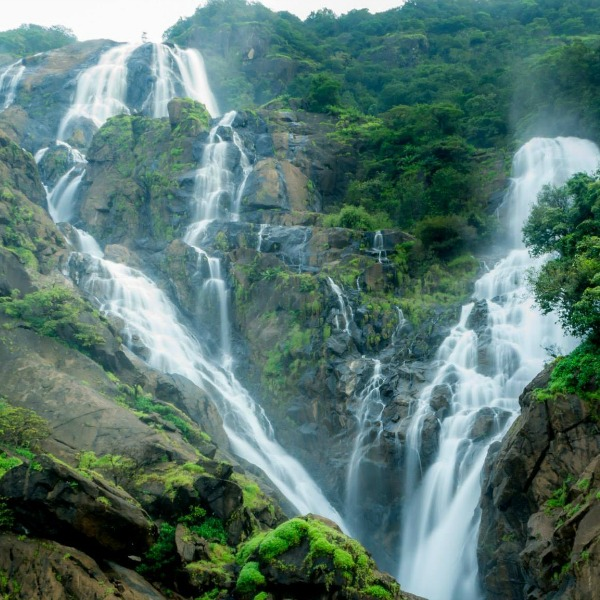 Best Places To Travel In July In India: Dandeli And Dudhsagar Falls Trip From Bangalore