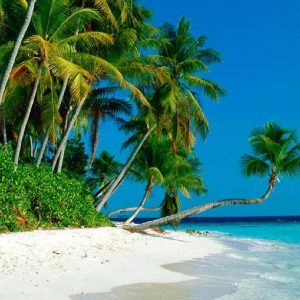 Beaches in Port Blair
