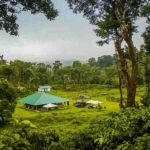 Coorg new year camping