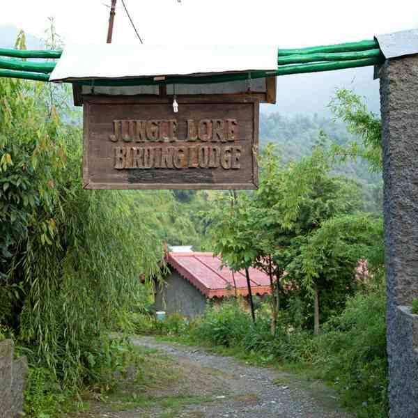 Book new year trip to Pangot