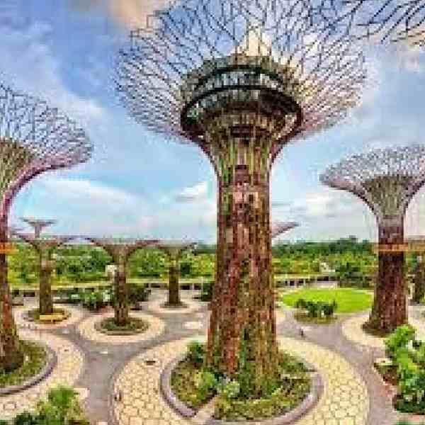 Honeymoon trip to SIngapore