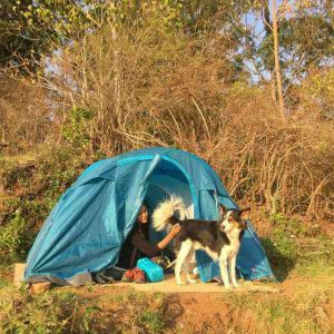 New Year Camping at Kodaikanal