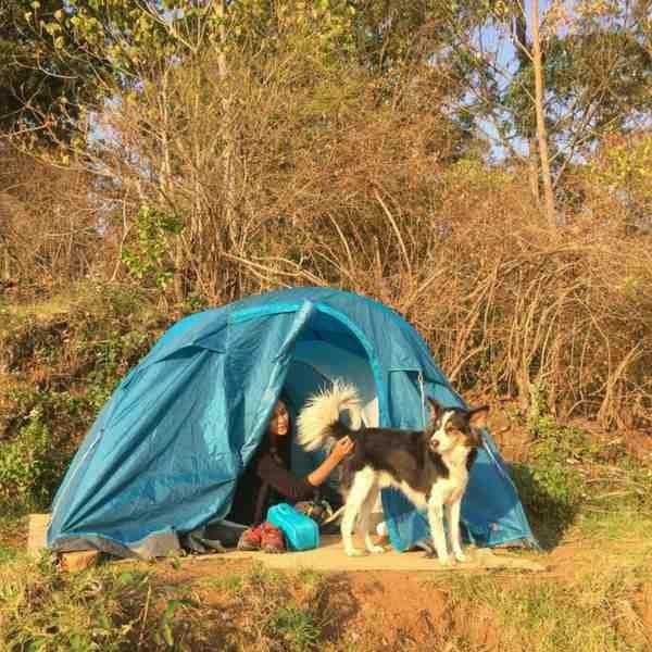 New Year Camping at Kodaikanal