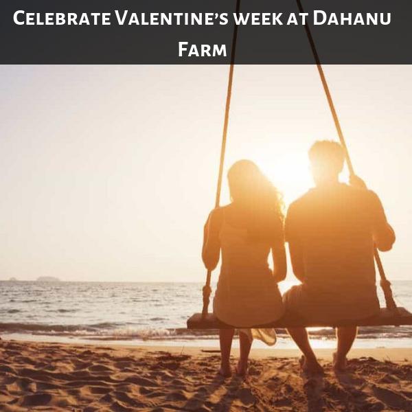 Celebrate Valentine's week at Dahanu Farm