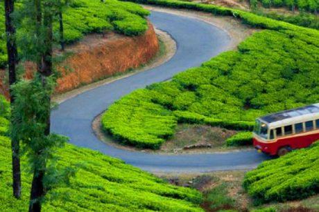 munnar trip from bangalore