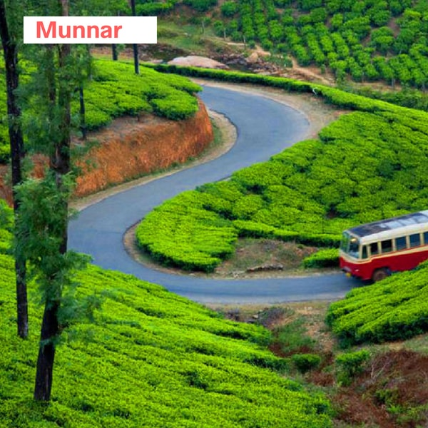 munnar trip from bangalore