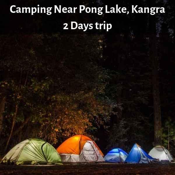 Camping Near Pong Lake