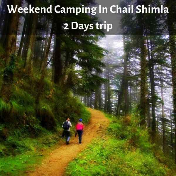 Weekend Camping In Chail