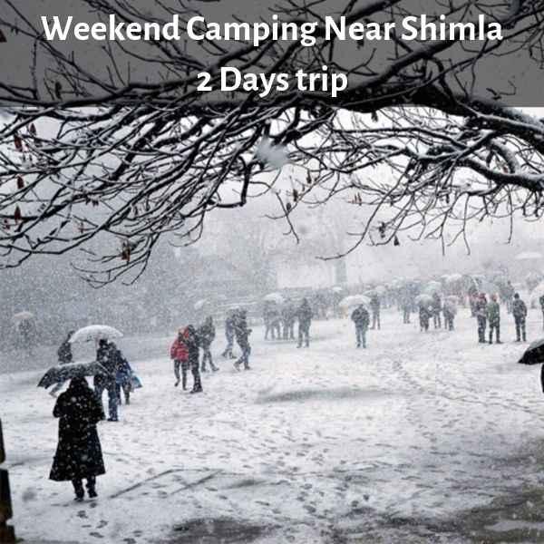 Camping Near Shimla