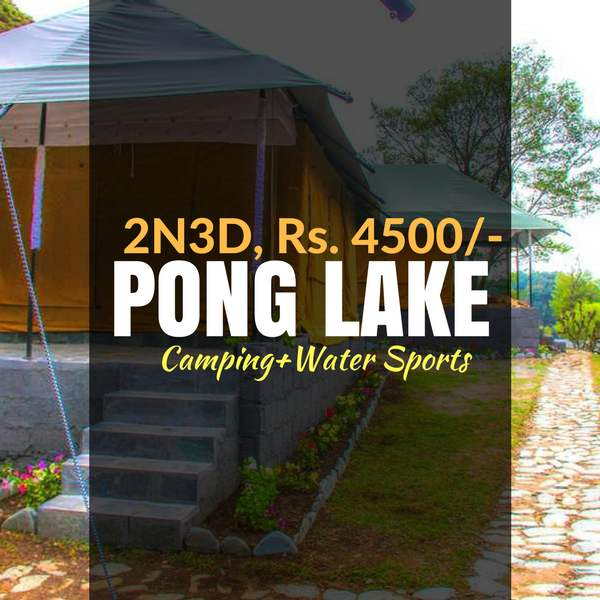 Camping_Pong lake_Weekendthrill