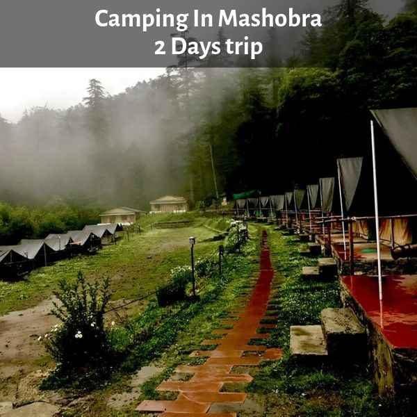 Camping In Mashobra