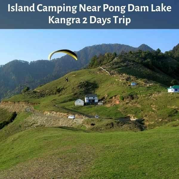 Island Camping Near Pong Dam Lake