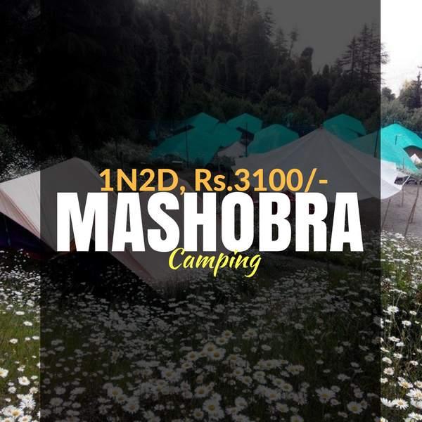 Camping_Mashobra_Weekendthrill