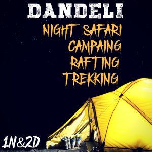 DANDELI (1)