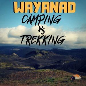 WAYANAD CAMPING
