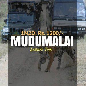 Camping_Mudumalai_Weekendthrill