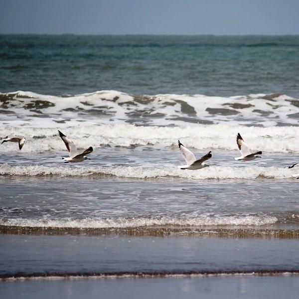 HARNAI MURUD BEACH TOUR