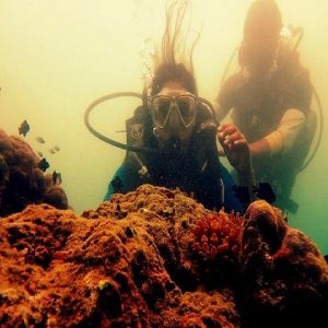Scuba Diving in North Bay Island Andaman with Boat Ticket weekend thrill