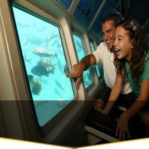 coral safari weekend thrill