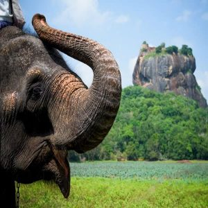SriLanka tour weekend thrill