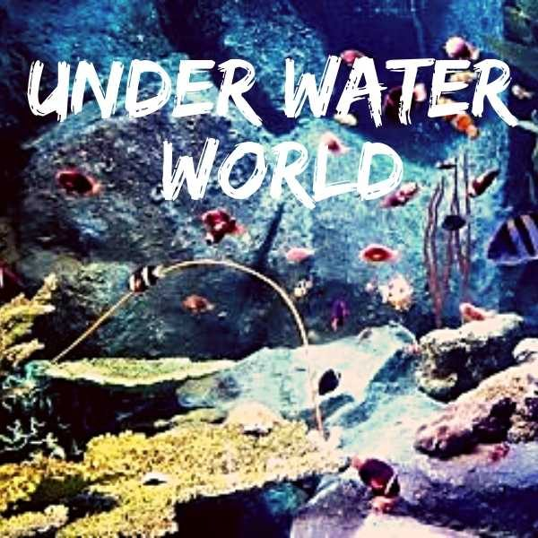 Under water world tour