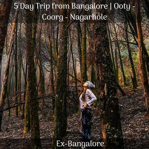Ooty Coorg Nagarhole 5 Days Trip from Bangalore