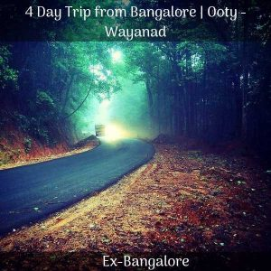 wayanad packages
