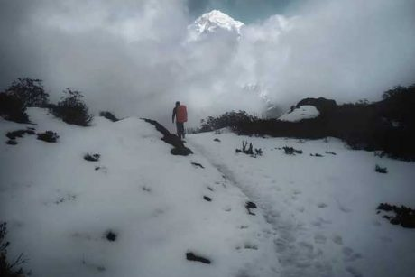 Gangtok Pelling trip