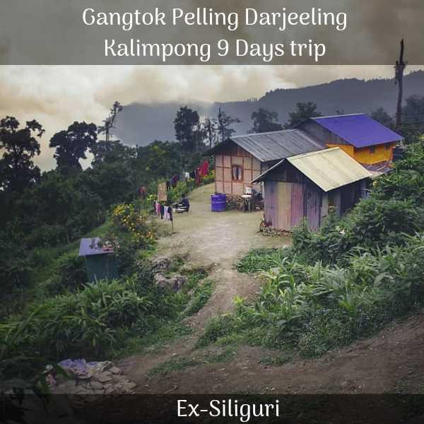 Gangtok Pelling Darjeeling Kalimpong trip