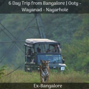 Ooty Wayanad Nagarhole trip