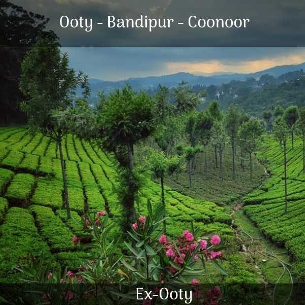 Ooty Bandipur Coonoor trip