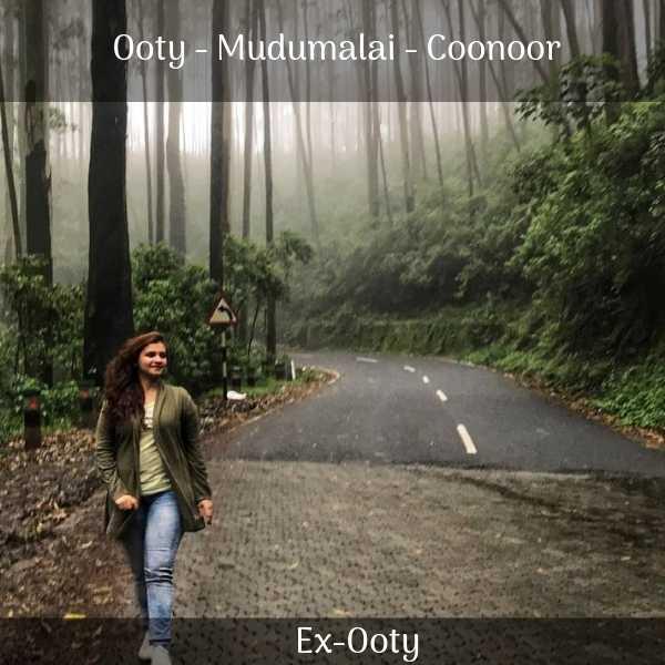 Ooty Mudumalai Coonoor trip